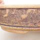Keramische Bonsai-Schale 21 x 21 x 6 cm, Farbe braun - 2/3
