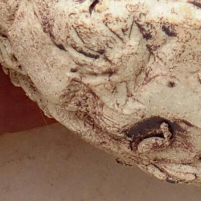 Keramikschale 5,5 x 6 x 4,5 cm, graubraun - 2