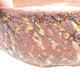 Bonsaischale aus Keramik 20,5 x 20,5 x 7,5 cm, Farbe Rissgelb - 2/3