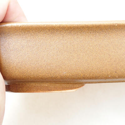 Bonsaischale aus Keramik 12 x 17 x 4,5 cm, Farbe braun - 2