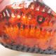 Keramikschale 7,5 x 7 x 4 cm, Farbe orange - 2/3
