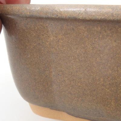 Bonsai-Schale H 75 - 19 x 14 x 7 cm - 2