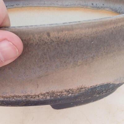 Bonsai-Schale 22 x 16,5 x 6 cm, grau-beige Farbe - 2
