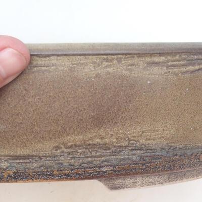 Bonsai-Schale 35,5 x 27,5 x 8 cm, braune Farbe - 2