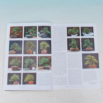 Bonsai und Japanischer Garten Nr.54 - 2