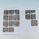 Bonsai und Japanischer Garten Nr.54 - 2/4