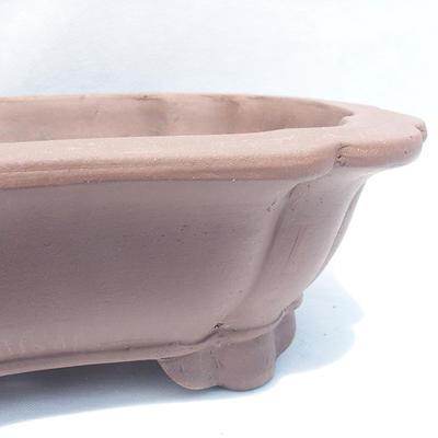 Bonsai-Schale 49 x 39 x 12 cm - 2