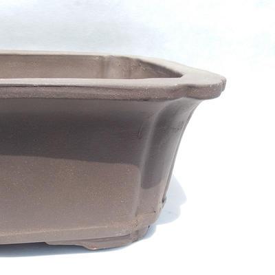 Bonsai-Schale 51 x 39 x 16 cm - 2