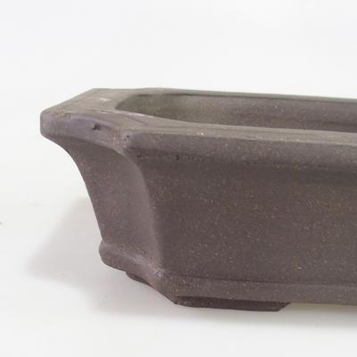 Bonsai-Schüssel 30 x 22 x 8 cm - 2