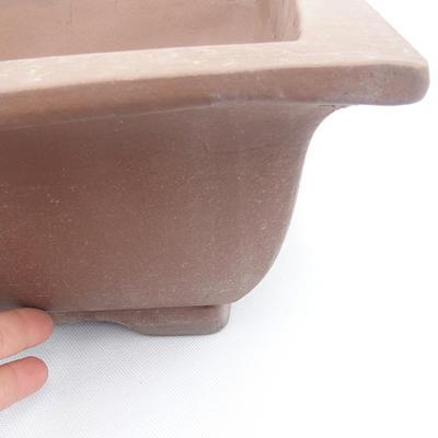 Bonsai-Schüssel 42 x 32 x 11 - 2