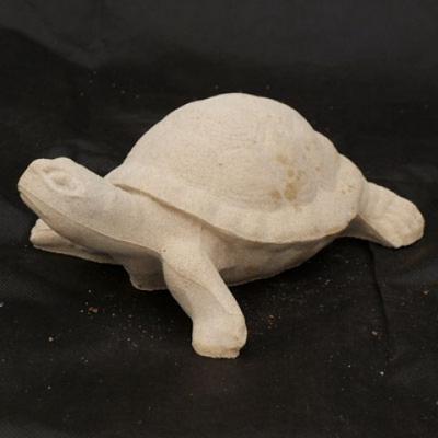Turtle LKO - 32 - 2