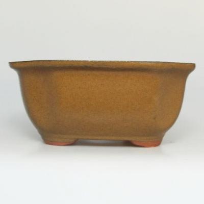 Bonsai Schüssel Tablett H32 - Schüssel 12,5 x 10,5 x 6 cm, Tablett 12,5 x 10,5 x 1 cm - 2