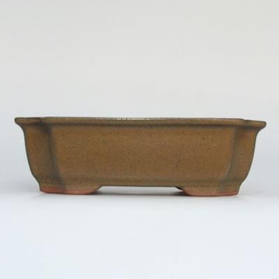 Bonsai-Schüssel + Untertasse H17 - Schüssel 14,5 x 10,5 x 4,5 cm, Untertasse 14,5 x 10 x 1 cm - 2