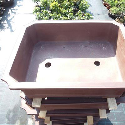 Bonsai-Schale 80 x 62 x 22 cm - 2