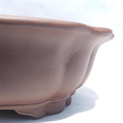 Bonsai-Schüssel 36 x 36 x 10 cm - 2
