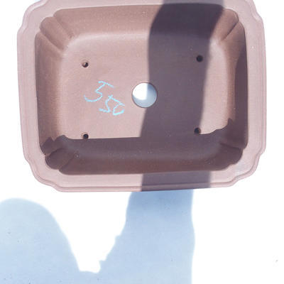 Bonsai-Schüssel 35 x 29 x 11 cm - 3