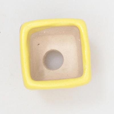 Mini Bonsai Schüssel 3 x 3 x 3 cm, gelbe Farbe - 3