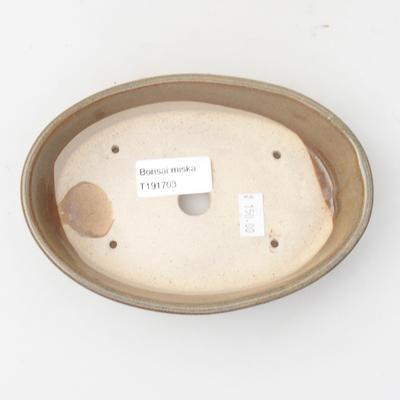 Keramik Bonsai Schüssel 16 x 11 x 4 cm, braune Farbe - 3