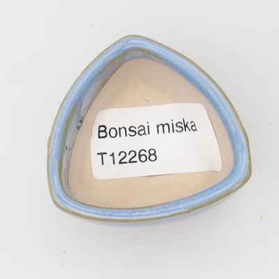 Mini Bonsai Schüssel - 3
