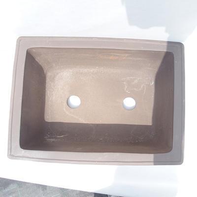 Bonsai-Schüssel 61 x 47 x 26 cm - 3