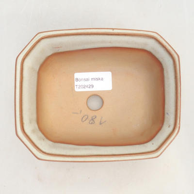 Bonsai-Schale 14,5 x 12 x 6,5 cm, beige Farbe - 3