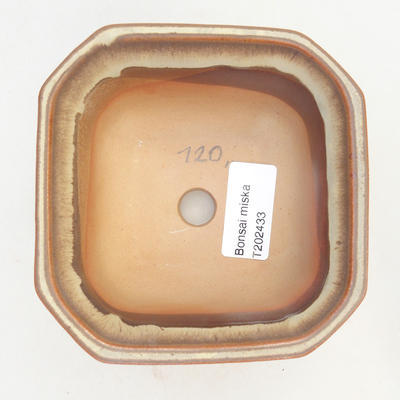 Bonsai-Schale 11 x 11 x 6,5 cm, Farbe braun-beige - 3