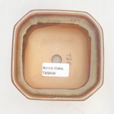 Bonsai-Schale 11 x 11 x 6,5 cm, braun-beige Farbe - 3