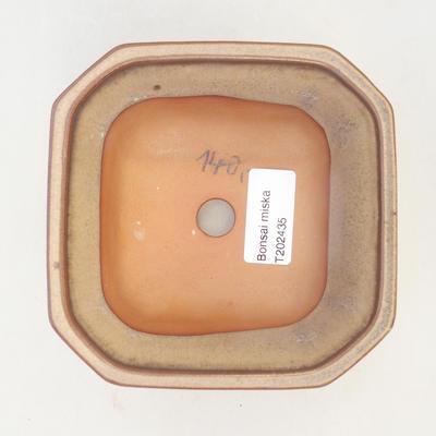 Bonsai-Schale 12 x 12 x 7 cm, braun-beige Farbe - 3