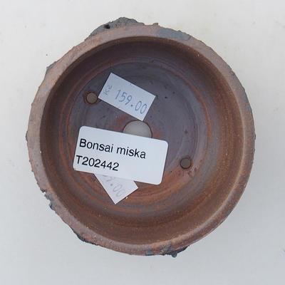 Keramische Bonsai-Schale 8 x 8 x 4,5 cm, Farbe rissig - 3