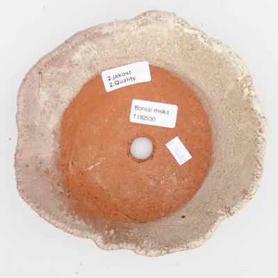 Bonsaischale aus Keramik 2. Wahl - 18 x 18 x 5 cm, Farbe beige - 3