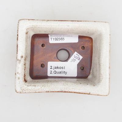 Bonsaischale aus Keramik 2. Wahl - 11 x 8,5 x 4 cm, Farbe beige - 3
