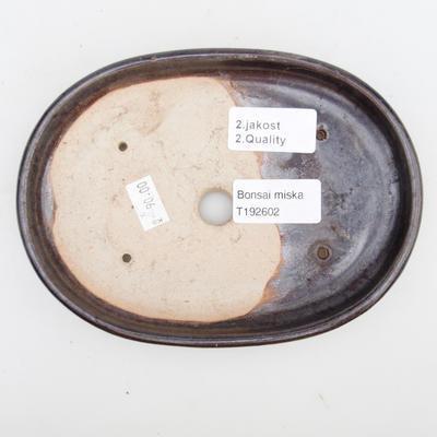 Keramik Bonsai Schüssel 2. Wahl - 17 x 12 x 2 cm, braune Farbe - 3