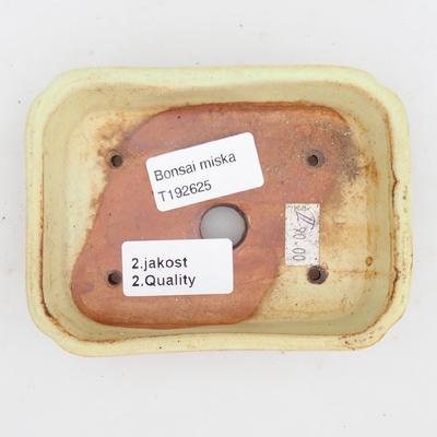 Keramik Bonsai Schüssel 2. Wahl - 12 x 9 x 3 cm, braun-gelbe Farbe - 3