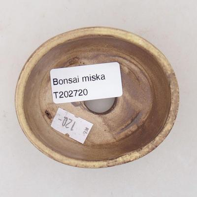 Keramische Bonsai-Schale 7,5 x 6,5 x 3,5 cm, gelbe Farbe - 3
