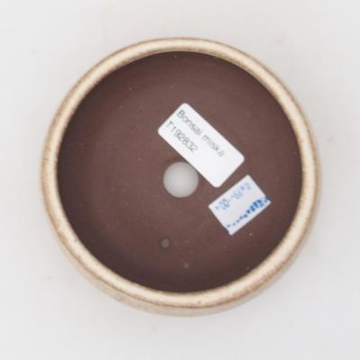 Bonsaischale aus Keramik 10,5 x 10,5 x 4,5 cm, Farbe beige - 3