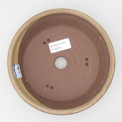 Keramik-Bonsaischale 17,5 x 17,5 x 4,5 cm, gelbbraune Farbe - 3