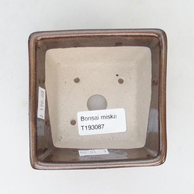 Keramik Bonsai Schüssel 9,5 x 9,5 x 5,5 cm, braune Farbe - 3