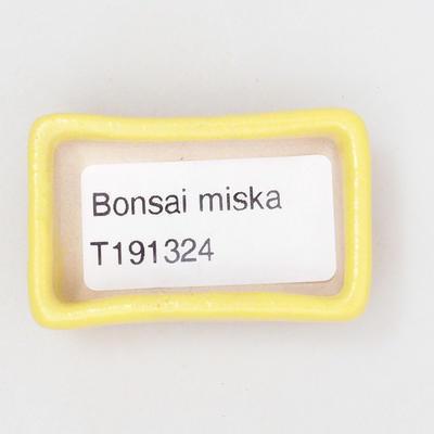 Mini Bonsai Schüssel 4,5 x 3 x 1,5 cm, gelbe Farbe - 3