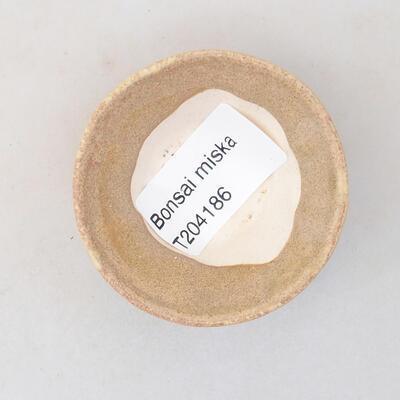 Mini-Bonsai-Schale 5,5 x 5,5 x 2,5 cm, beige Farbe - 3