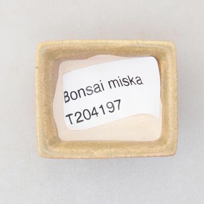 Mini Bonsai Schüssel 4 x 3 x 2 cm, beige Farbe - 3