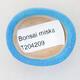 Mini Bonsai Schüssel 4 x 3,5 x 1,5 cm, Farbe blau - 3/3