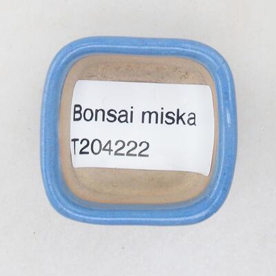 Mini Bonsai Schüssel 3,5 x 3,5 x 2,5 cm, Farbe blau - 3