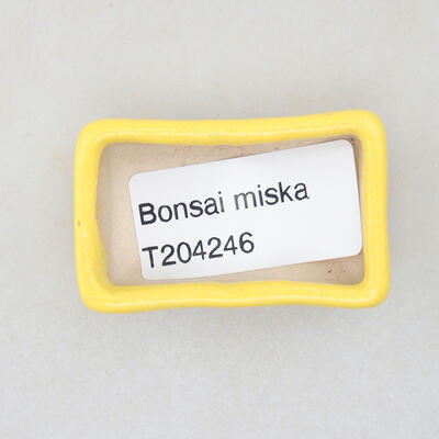 Mini Bonsai Schüssel 4,5 x 2,5 x 1,5 cm, gelbe Farbe - 3