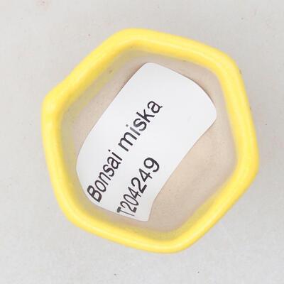 Mini Bonsai Schüssel 3,5 x 3,5 x 3 cm, Farbe gelb - 3