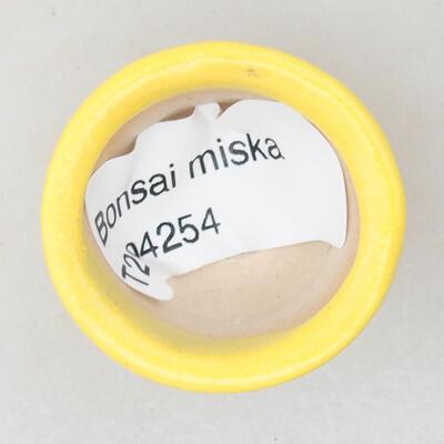 Mini Bonsai Schüssel 3 x 3 x 2 cm, Farbe gelb - 3