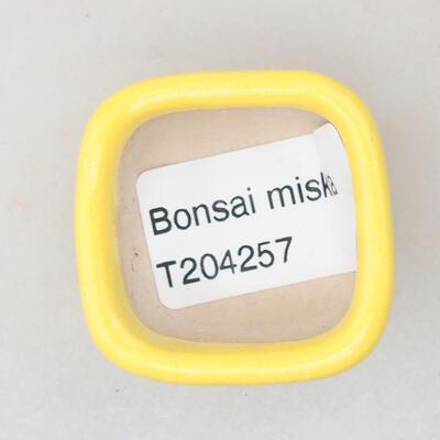 Mini Bonsai Schüssel 3,5 x 3,5 x 2,5 cm, gelbe Farbe - 3