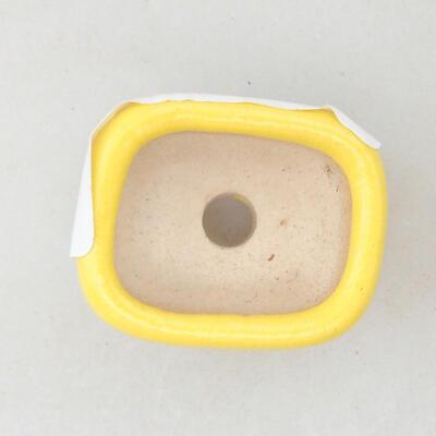 Mini Bonsai Schüssel 2,5 x 2 x 1,5 cm, Farbe gelb - 3