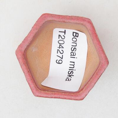 Mini Bonsai Schüssel 4 x 3,5 x 2 cm, Farbe rot - 3