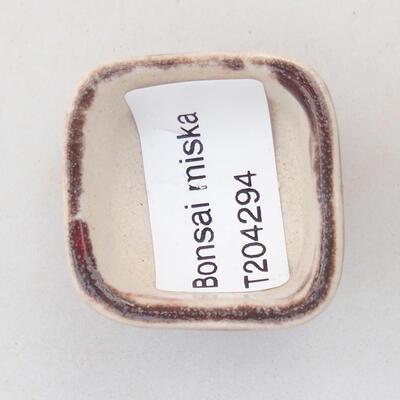 Mini Bonsai Schüssel 3,5 x 3,5 x 2,5 cm, Farbe rot - 3