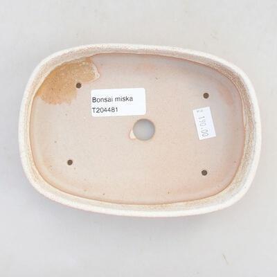 Keramische Bonsai-Schale 15,5 x 10,5 x 3 cm, beige Farbe - 3